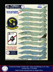 Furball-72-Tomcat-Colors-and-Markings-Pt.I_01