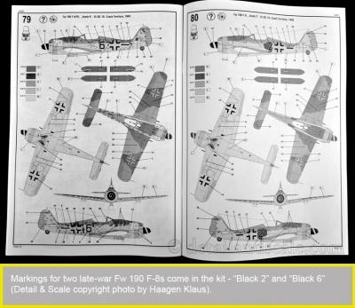 RoG-Fw-190-F-8_16